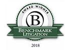 Benchmark-Lit-logo-2018_139x100