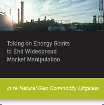 case_study_callout_Naturalgas_2