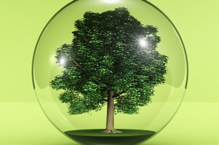 Main_235-Tree-In-Glass-Ball